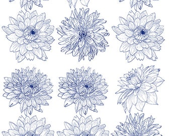 Dahlia ~ 55553 ~  Glass Decal - Ceramic Decal - Fusible Glass Decals - Waterslide Transfer ~ 3 sizes to choose from