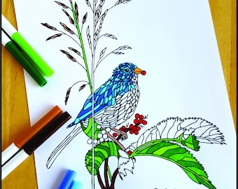 Coloring Page, Bird Eating Berries, Printable