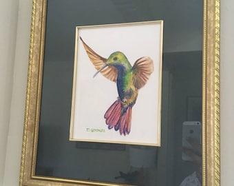 Framed Watercolor on Paper Hummingbird