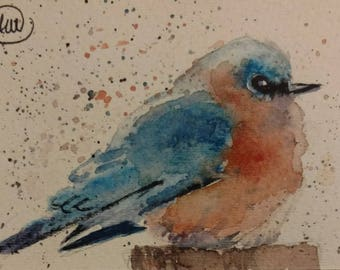 cold BLUE BIRD - ACEO original watercolor painting