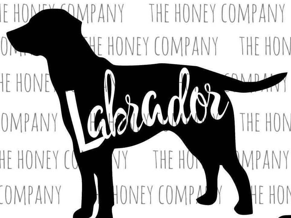 lab svg png dxf labrador outline instant download
