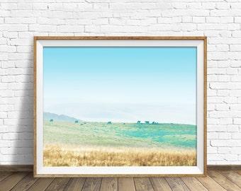 "landscape, photography, printable art, downloadable art, large art, large wall art, printable wall art, art print - ""Raining on the Meadows"""