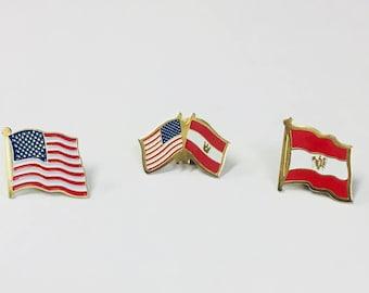 Austrian - American  Flag Pin Set