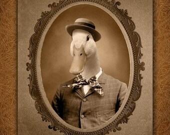 5x7 inch Hot Digital Dog Mr. Quackers Duck