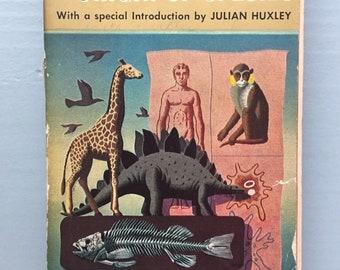 Origin of Species Charles Darwin Paperback Mentor 1958