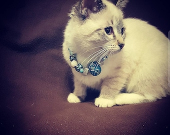 Small beaded cat collar