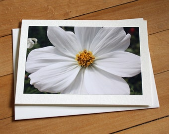 Flower Greeting Card, Blank Greeting Card, Note Card, Any Occasion, Birthday Card, Envelope, Photography, Photograph, Flower, Cosmo, Girl