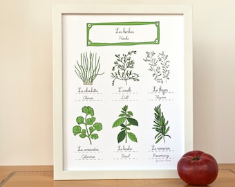 Herbs print 11x14 art print - Modern French Kitchen - Gift for a Foodie Aromatics Chef Gourmet Green GeraldineAdams