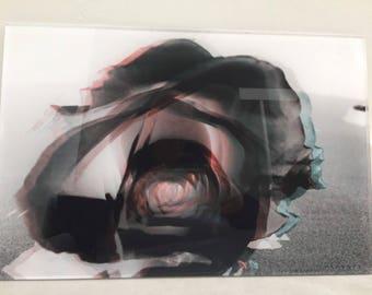 "Original acrylic photo print 18""x12"" black rose. Ready to hang."