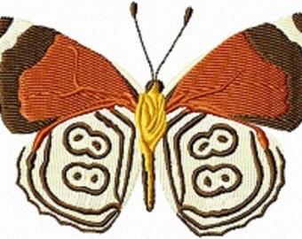 88 butterfly 328
