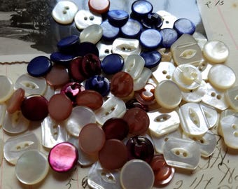 50 Small Shell Buttons. White, Pink, Blue, Purple. Small.