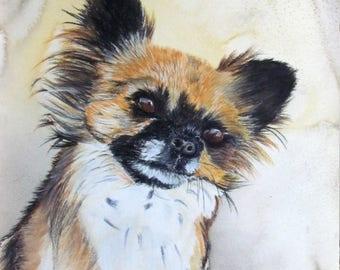 shag - animal art - Chihuahua dog portrait