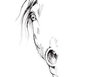 Original pen drawing of a horse