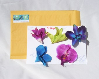 Five Orchid Head Samples
