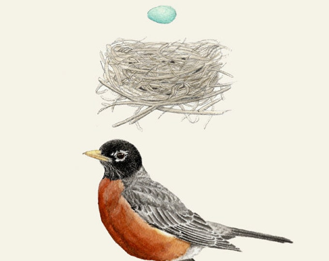 18 Robin Nest Egg Card Plain Background