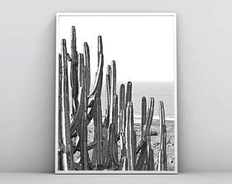 Cactus Print, Black & White, Nature Photography, Printable Wall Art, Poster, Landscape Photo, Coastal Decor, Sea, Beach, Digital Download