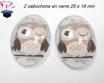 2 cabochons glass 25mm x 18mm OWL theme