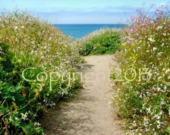 Beach Greeting Cards - Choose any Blank Cards or any size photo