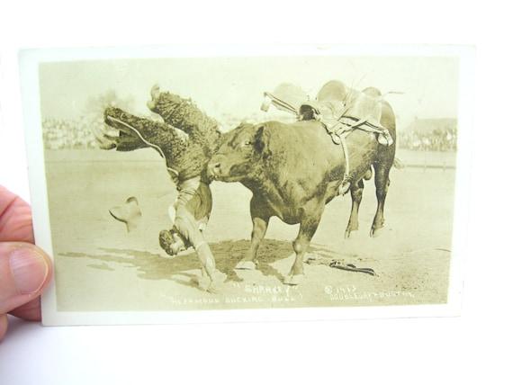 Antique 1910s Cowboy Rodeo Photo Postcard The Famous Bucking Bull Sharkey
