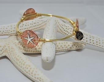 Starfish sand dollar