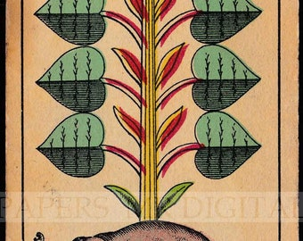 Antike Karte / antike Spielkarten / Elefanten spielen Karte / digitale Instant Download / Papier Ephemera / Deutsch spielen Karte / Elefant-Kunst