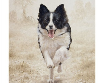 Border Collie Limited Edition Print, Running Free.  Personally signed and numbered by Award Winning Artist JOHN SILVER. JSFA89