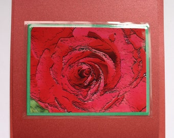 Red Rose card,gift card,valentine,love