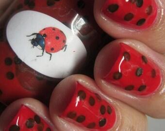 Animal Ladybug  Nail Polish