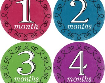 Monthly Bodysuit Baby Growth Stickers - Whimsical - Milestones, Photo, Girl, Simple