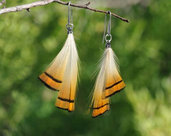 boho earings,  sripped feathers, orange and black _ natural feasan feathers _ gift idea for bir lover _ natural jewelry