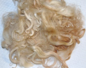 Karakul Sheep Wool Locks for Doll Hair, Doll Wig, Spinning and Felting, Hand Dyed shades of Light to Medium Blond 1 oz.