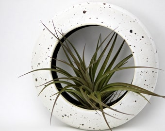 Wall hanging planter for airplant, tillandsia O-Planter by Golem Designs, 2018