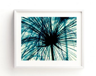 blue nursery print, papyrus photograph, nature printable, garden print, teal, botanical print, photography, abstract decor, girls room art