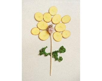Gardening Gift, Food Photography, Kitchen Decor, 5x7 Print, Flower Photography, Vegetables, Still Life Photograph, Nature Photograph, Flower
