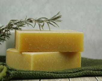 Natural Campers Shampoo - Bug Shampoo - Insect repellent Soap