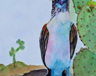 Blue Footed Booby,Original Watercolor Painting,Galapagos,Watercolor Painting,Animal Art,Prints,Giclee Prints,Free Shipping,Carol Lytle #104