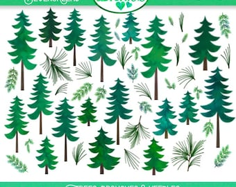 Evergreen Watercolor Clipart