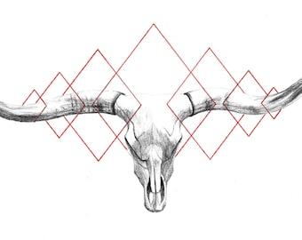 Longhorn Skull Print