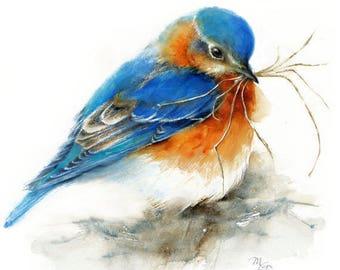 Bluebird  - Giclee Print of watercolor painting. Bird Art. Nature or Bird Illustration, Blue and Orange Dorm Decor Wall
