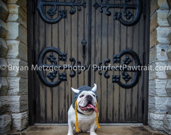 Viking Castle English Bulldog Print, Fine Art Photography Print, Purrfect Pawtrait Pet Photography, Animal Photography