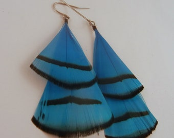 Feather Earrings Blue Lady Amherst
