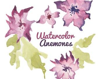 Watercolor Anemone clip art flower clip art flowers watercolor digital clip art illustration digital watercolors floral purple