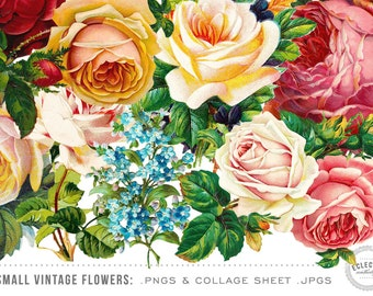 100 Small Vintage Flower Graphics - Commercial Use OK