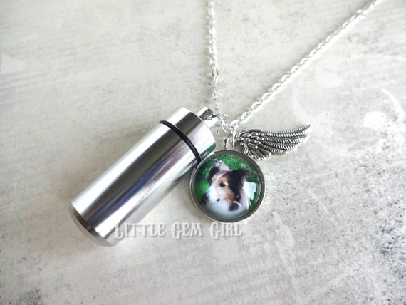 Custom photo pet urn charm necklace cremation ashes capsule for Cremation jewelry for pets ashes