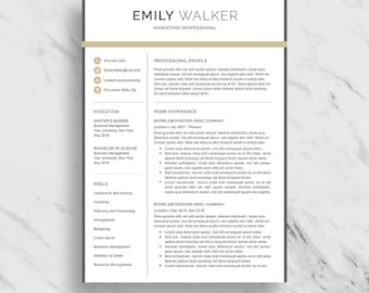 professional resume template for word modern resume design 2 page resume download marketing - Professional Marketing Resume