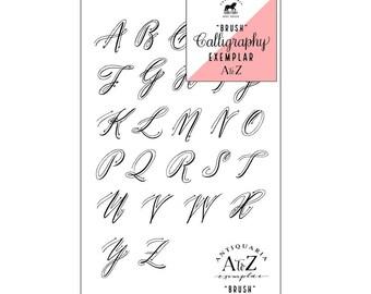 Brush Calligraphy Example kit