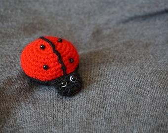 Ladybug, Lucky Charm,...