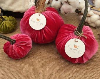 Azalea Pink Velvet Pumpkins with Real Pumpkin Stems