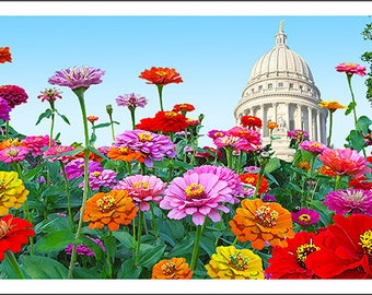 Zinnia's at the Capitol