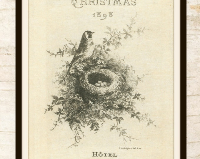 Christmas printable - Bird and Nest - Vintage Christmas - Christmas Wall Art - Rustic Christmas Prints - Christmas Bird - Instant Download